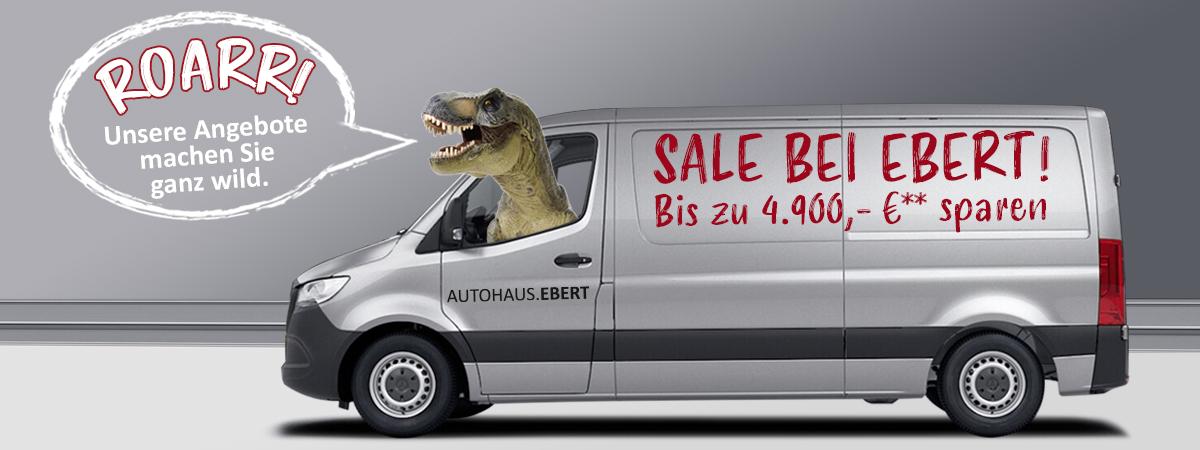 EBERT Aktionspreis