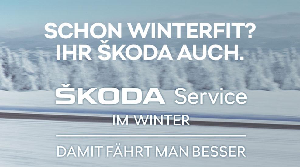 EBERT SKODA Wintercheck